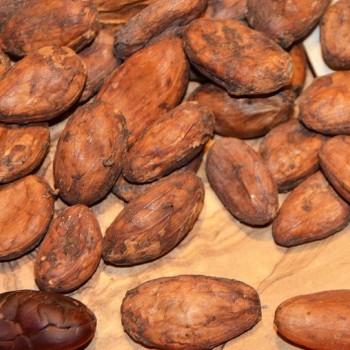 """Какао-бобы сырые сорт """"Криолло"""", органик, 1 кг."""