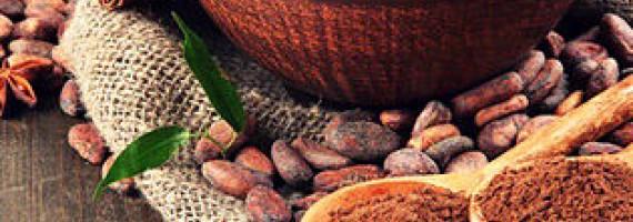 О пользе какао-бобов